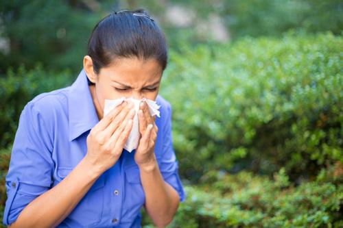 Closeup portrait young woman in blue shirt with allergy or cold blowing her nose with a tissue looking miserable .